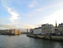 Weergeven van de zegenrivier en de Parijse gebouwen royalty-vrije stock fotografie