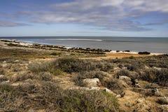Weergeven van Denham-Vooruitzicht in de westkust van Westelijk Australië stock fotografie