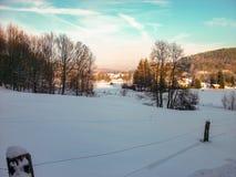Weergeven van een de winterlandschap in het Thuringian-Bos royalty-vrije stock afbeelding