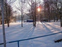 Weergeven van een de winterlandschap in het Thuringian-Bos stock afbeelding