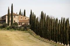 Weergeven van een Landbouwbedrijf in centraal Toscanië royalty-vrije stock afbeeldingen