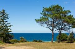 Weergeven van een Vreedzame Blauwe Oceaan van over Met gras bedekt Land stock fotografie