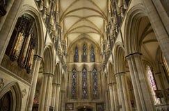 Weergeven van het Zuiden Transcept van Beverely-Munster van het koor, Beverley, het Berijden van het Oosten van Yorkshire, het UK royalty-vrije stock foto's