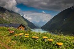 Weergeven van idyllisch berglandschap in Alpen met verse groene weiden in bloei en blauw meer op zonnige dag in de zomer Oostenri royalty-vrije stock foto
