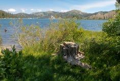Weergeven van Marlette-Meer in Meer Tahoe stock foto
