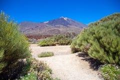 Weergeven van mooie vulkaan Teide royalty-vrije stock foto