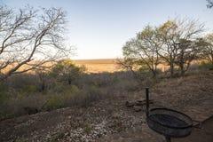 Weergeven van Olifants-het Park van Kampkruger royalty-vrije stock afbeelding