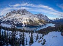 Weergeven van Peyto-Meer in het Nationale Park van Banff royalty-vrije stock afbeelding