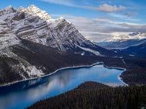 Weergeven van Peyto-Meer in het Nationale Park van Banff royalty-vrije stock foto's