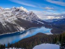 Weergeven van Peyto-Meer in het Nationale Park van Banff stock afbeelding