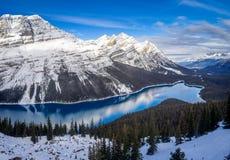 Weergeven van Peyto-Meer in het Nationale Park van Banff royalty-vrije stock foto