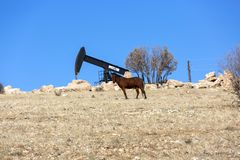 Weergeven van Pumpjack Horsehead bij Industrie van de Daglichtolie royalty-vrije stock foto's