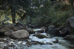 Weergeven van rivier en randen stock foto's