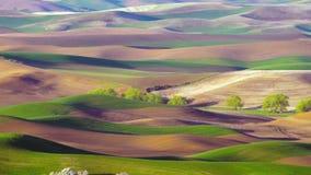 Weergeven van Steptoe-Butte Oostelijk Washington Palouse Farmland stock video