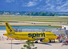 Weergeven van vliegtuig van Spirit Airlines NK bij de poort in Orlando International Airport MCO 6 royalty-vrije stock foto