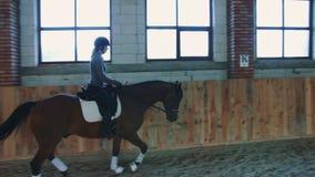 Weergeven van vrouw opleiding en het berijden paard op zandige arena onder dak stock video