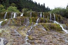 Weergeven van water die bij de Prachtige Vliegende Waterval vallen stock fotografie