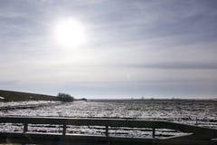 Weergeven van weg van de weiden en de gebieden van het de winterlandschap die met laag van sneeuw worden behandeld Verbazend natu royalty-vrije stock afbeeldingen