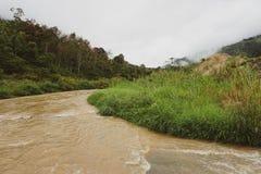 Weergeven van Wildernis en Bergpieken en Kleine Rivier in het Regenwoud van Maleisië met Bewolkte Stormachtige Hemel Weelderige G stock afbeelding