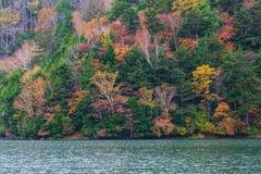 Weergeven van Yuno-Meer in de herfstseizoen bij het nationale park van Nikko, Nikko royalty-vrije stock fotografie