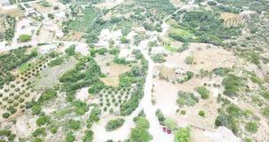 Weergeven vanaf de bovenkant van de bergen met olijfbomen stock footage