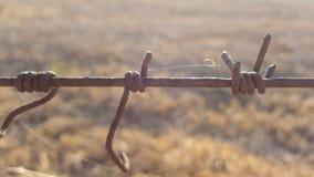 Weerhaakdraad tussen twee landbouwbedrijven in Zuid-Afrika stock afbeelding