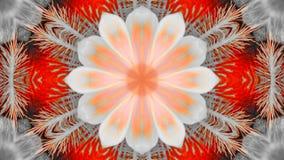 Weerspiegeld effect van een irisbloem royalty-vrije illustratie