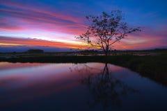 Weerspiegelde de zonsondergang van Beautifuazië stock foto