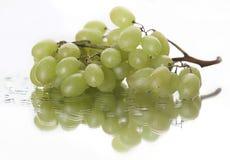 Weerspiegelde druiven Stock Fotografie