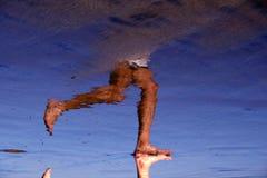 Weerspiegelde Jogger Stock Foto's