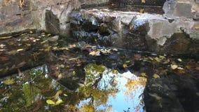 Weerspiegeling van de hemel, de gouden bladeren en de golven op het water uit de bron stock videobeelden