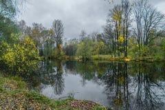 Weerspiegeling van de herfst in de wateren van bosmeer stock afbeelding