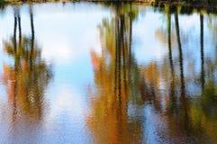 Weerspiegelingen van de herfstkleuren Stock Afbeeldingen