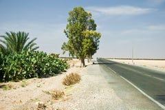 Weg aan Agadir royalty-vrije stock foto's