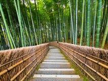 Weg aan bamboebos, Arashiyama, Kyoto, Japan stock foto's