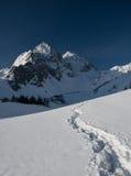 Weg aan bergen Stock Foto