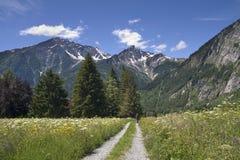 Weg aan bergen Royalty-vrije Stock Fotografie
