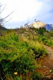 Weg aan de berg Stock Afbeeldingen