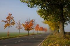Weg aan de de herfstmist Stock Afbeelding