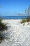 Weg aan de Golf van Mexico Royalty-vrije Stock Foto's