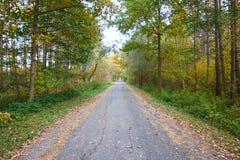 Weg aan de herfst Stock Foto's