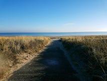 Weg aan de strand Oostzee stock afbeelding