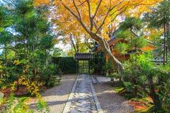 Weg aan een tempel met natuurlijke scène Stock Afbeeldingen