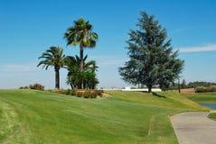 Weg aan golfcursus Royalty-vrije Stock Afbeeldingen