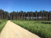 Weg aan het bos Stock Fotografie