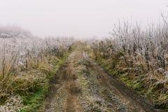 Weg aan het gebied Ochtendmist en vorst op het gras Landelijk landschap vroeg in de ochtend Aarden weg op het gebied stock afbeelding