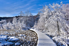 Weg aan het Sprookjesland van de Winter Royalty-vrije Stock Fotografie