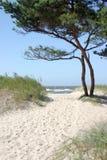 Weg aan het strand royalty-vrije stock foto's