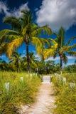 Weg aan het strand en palmen bij Smathers-Strand, Key West, FL Stock Fotografie