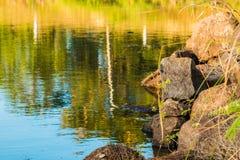 Weg aan het water Royalty-vrije Stock Foto's